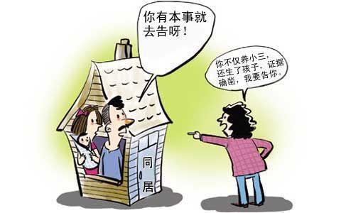 婚外情法律怎么处理_婚外情法律_法律讲堂生活版婚外情